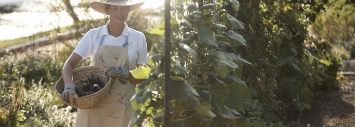 A woman in a matching cowboy hat and apron walks through a garden harvesting food and placing it in a basket.