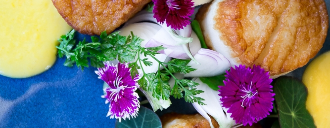 An overhead shot of a beautifully prepared dish: seared scallops with a creamy sauce and three purple flowers as a garnish.