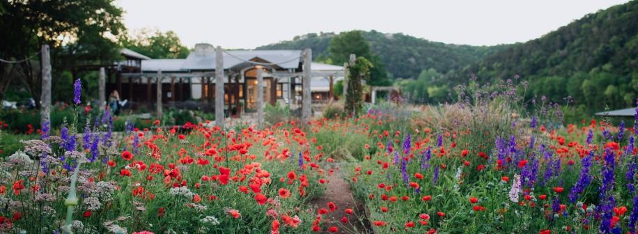 Gardens of Lake Austin
